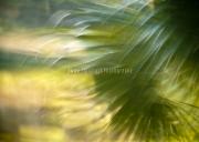 2009.10.ywky_DSC7305