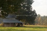 2012.10.26RTB_dsc3427