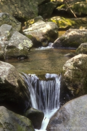 Mountain stream in South Mountain SP