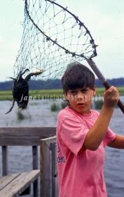crab300