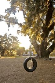 2007.2.Tire swing